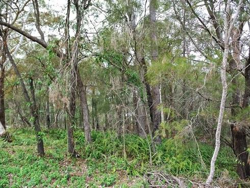 10 President Terrace Macleay Island, QLD 4184