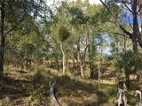 Lot 3 Wattle Camp Road Wattle Camp, QLD 4615