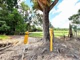 869 Granadilla Road Granadilla, QLD 4855