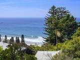 170 Whale Beach Road Whale Beach, NSW 2107