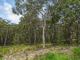 139a Donnelly Road Arcadia Vale, NSW 2283