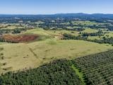 1143 Friday Hut Road Binna Burra, NSW 2479