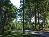 16 Parakeet Street Macleay Island, QLD 4184